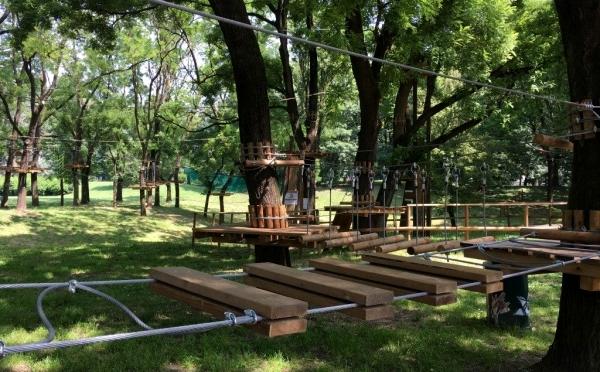 Tree Experience Corvetto Milano