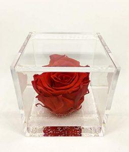 Regali San Valentino per lei