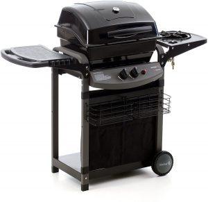barbecue modello a gas