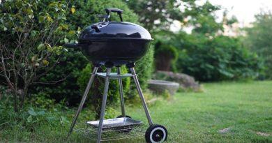 barbecue caratteristiche